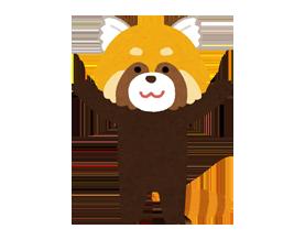 ※イラスト:レッサーパンダ